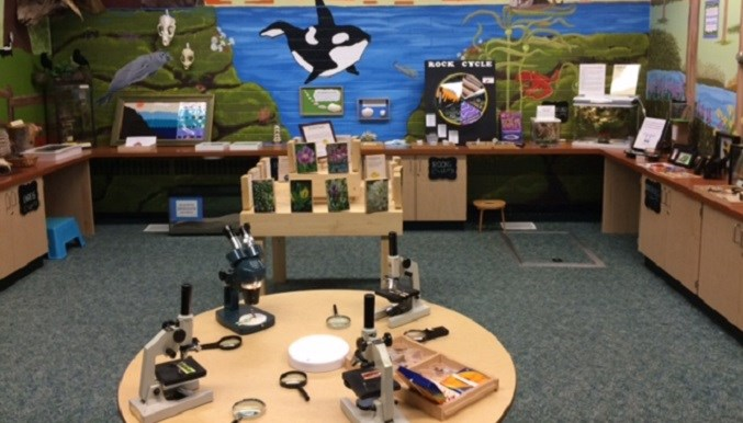 Interactive Nature Room at Seaview Elementary