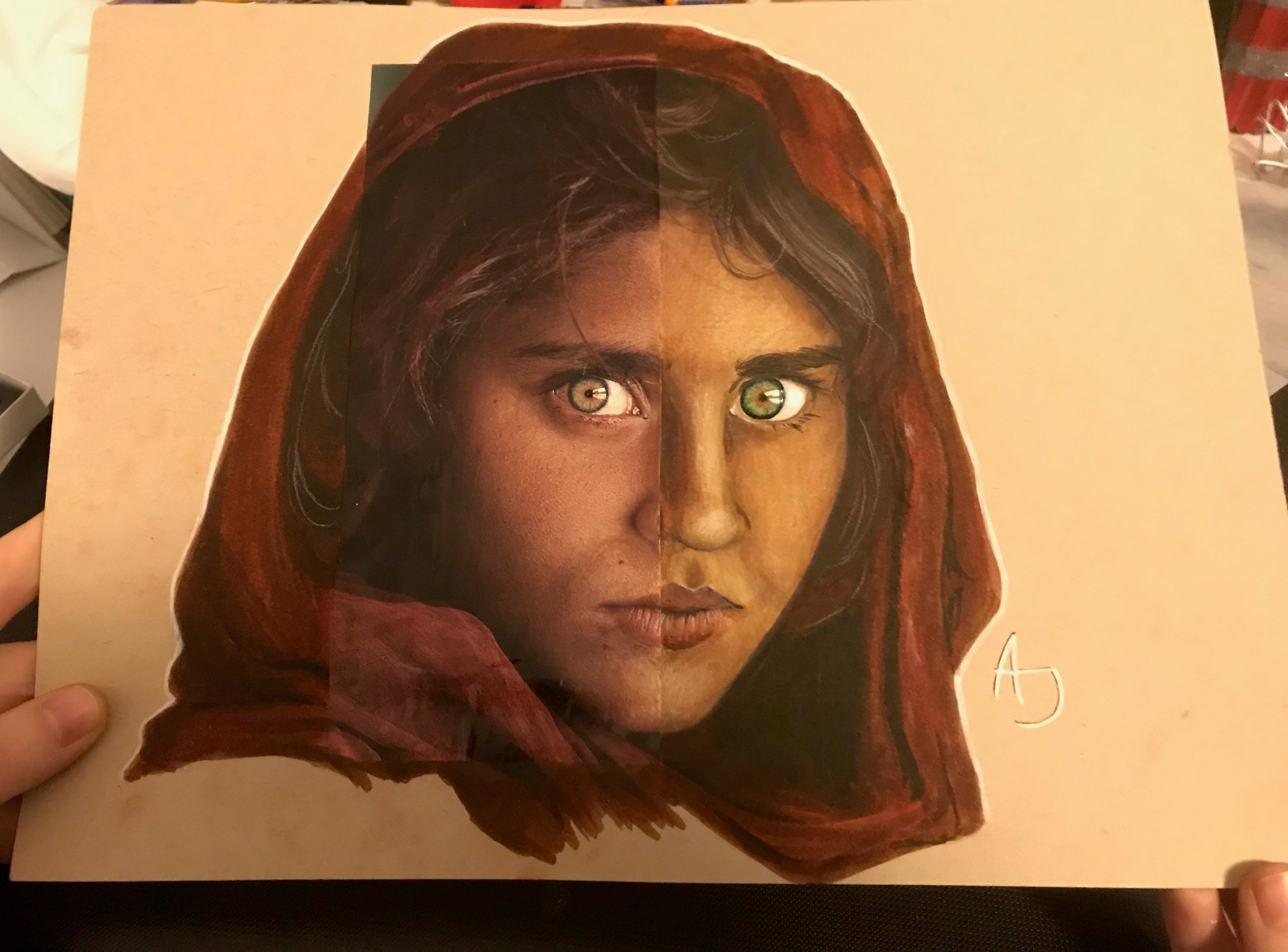 """A Walk Through the Masters""  - After a photograph of Sharbat Gula"
