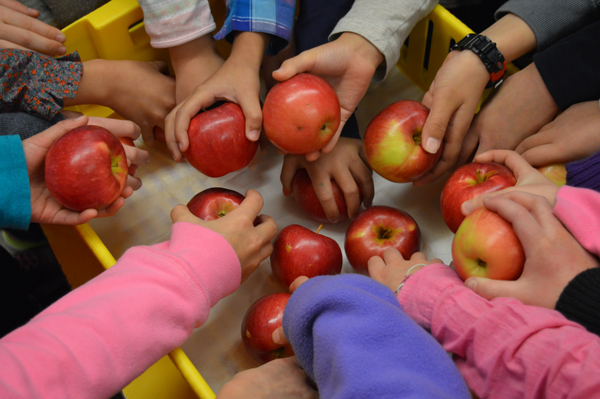 Harbourview BC Fruits and Veggies Program